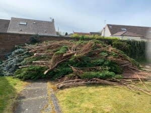 Garden Waste and Rubbish Clearance Living and West Lothian