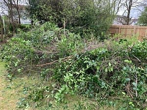 Garden Waste And Rubbish Removal Stirling Falkirk Area